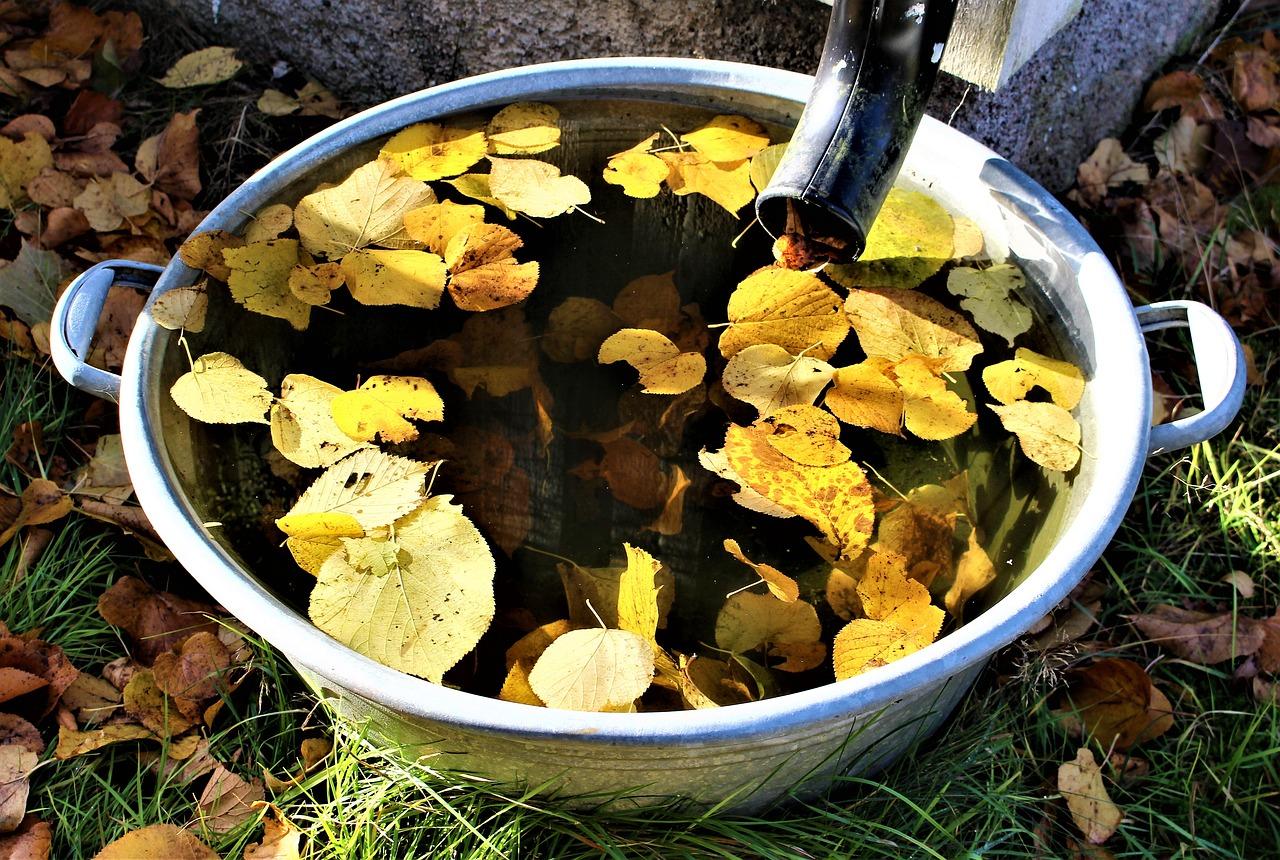 Program gromadzenia wody w gospodarstwie – nowa propozycja PZPRZ